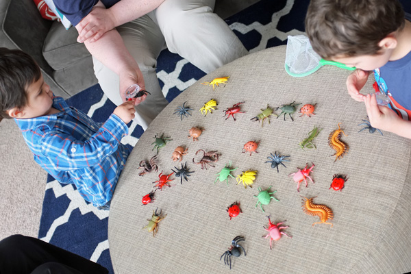 Bug Party