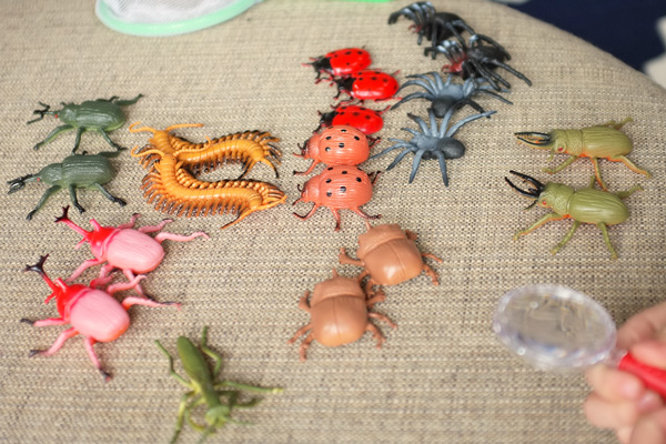 Bug Party Bug Match Game