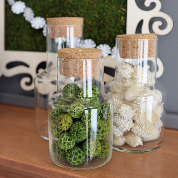 Corked Glass Specimen Jars