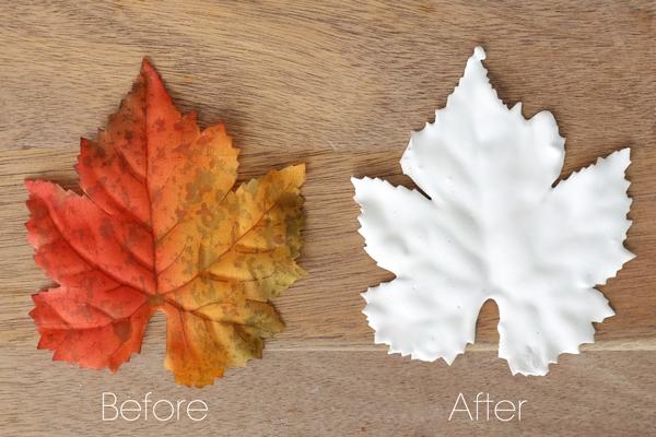 DIY Plaster Leaves