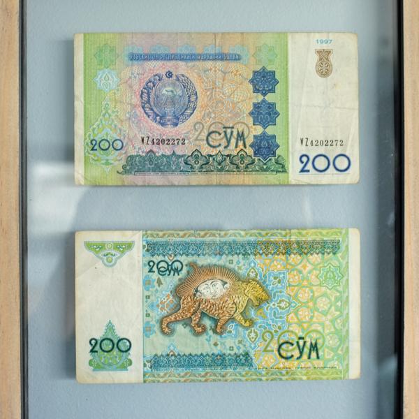 Easy Art Framed Currency | tealandlime.com