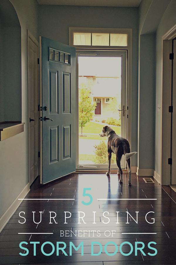5 Surprising Benefits of Full View Storm Doors